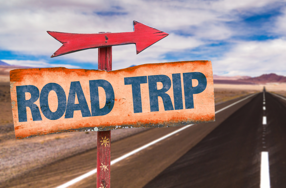 back neck pain-free road trips
